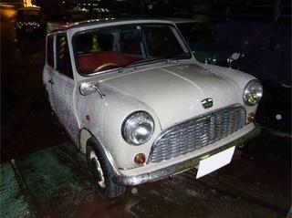 RIMG0010'.jpg