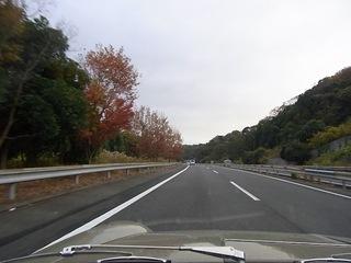colourful_autumn.JPG